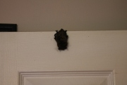 bedroom-bat