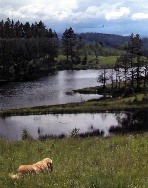 Clarence lake